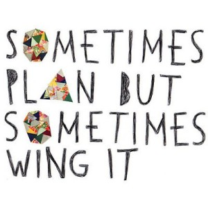 Sometimes Plan but Sometimes Wing It